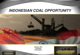 INDONESIAN  COAL  OPPORTUNITY