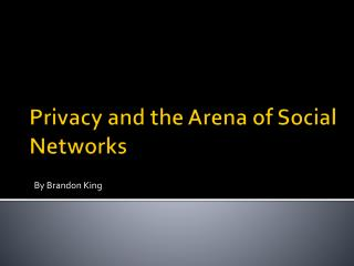 Privacy and the Arena of Social Networks
