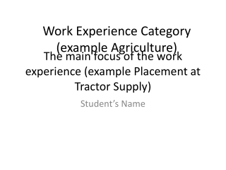 The main focus of the  work experience (example Placement at Tractor Supply)