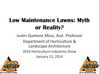 Low Maintenance Lawns: Myth or Reality?