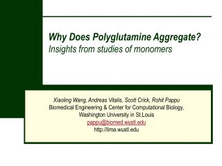 why does polyglutamine aggregate  insights from studies of monomers