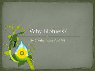 Why  Biofuels ?