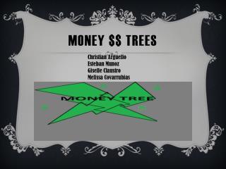 MONEY $$ TREES