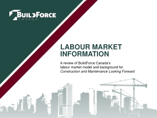 Labour Market Information
