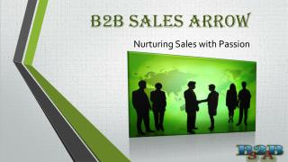 B 2 B Sales Arrow Nurturing Sales with Passion