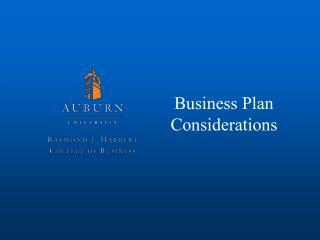 Business Plan Considerations