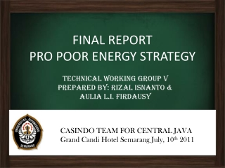 FINAL REPORT PRO POOR ENERGY STRATEGY