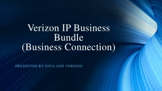Verizon IP Business Bundle  (Business Connection)