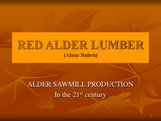 red alder lumber alnus rubra