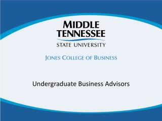 Undergraduate Business Advisors