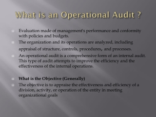 What is an Operational Audit ?