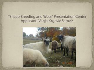 """""""S heep  B reeding  and  Wool """"  Presentation Center  Applicant: Vanja Krgović-Šarović"""