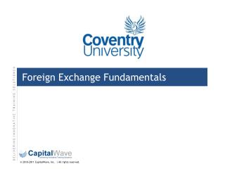 Foreign Exchange Fundamentals