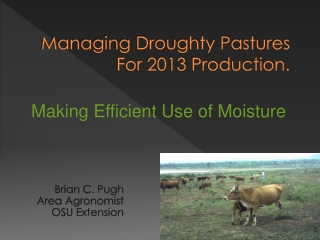 Managing Droughty Pastures For 2013 Production.