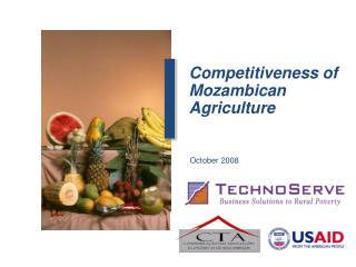 Competitiveness of Mozambican Agriculture