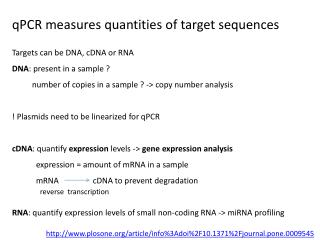 qPCR measures quantities of target sequences
