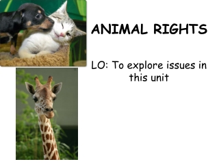 ANIMAL RIGHTS LO: To explore issues in this unit