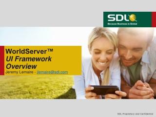 WorldServer™ UI Framework Overview