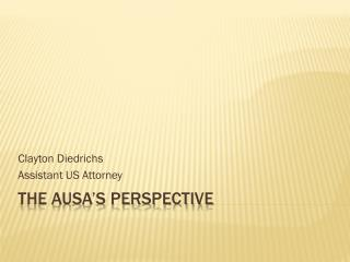 THE AUSA'S PERSPECTIVE