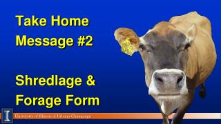 Take Home Message #2 Shredlage  & Forage Form