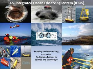 U.S. Integrated Ocean Observing System (IOOS)