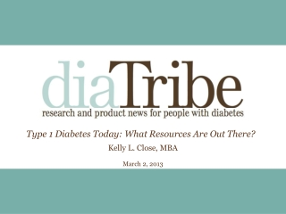 Type  1 Diabetes Today: What Resources  Are  Out There?  Kelly L. Close, MBA March 2, 2013
