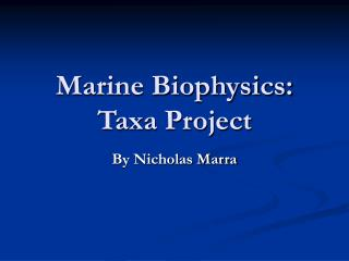 marine biophysics:  taxa project