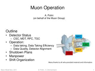 Muon  Operation