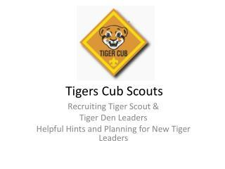 Tigers Cub Scouts