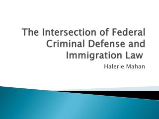 The Intersection of Federal Criminal Defense and Immigration Law