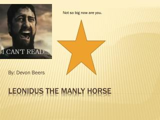 Leonidus the Manly Horse