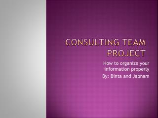 CONSULTING TEAM PROJECT