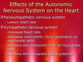 Effects of the Autonomic Nervous System on the Heart