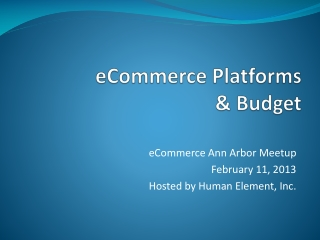 eCommerce Platforms  & Budget