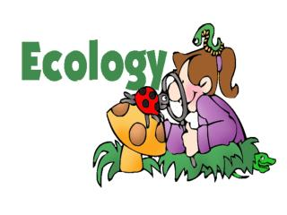 Ecology—the scientific study of  interactions  between different  organisms  and between organisms and their  environme