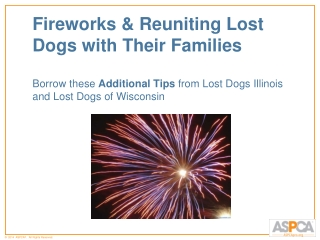 Fireworks & Reuniting Lost Dogs with Their  Families Borrow these  Additional  Tips  from Lost  Dogs  Illinois and Lost