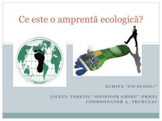 Ce este o amprentă ecologică?