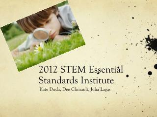 2012 STEM Essential Standards Institute
