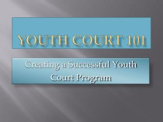 Youth Court 101