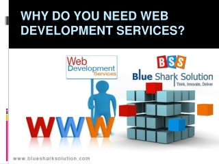 Why do you need web development services ?