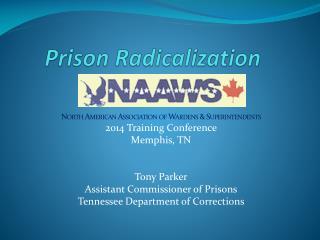 Prison Radicalization