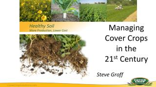 Managing  Cover Crops  in the  21 st  Century Steve Groff