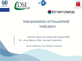 Interpretation of household indicators