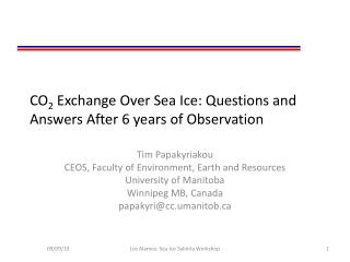 CO 2  Exchange Over Sea Ice: Questions and Answers After 6 years of Observation