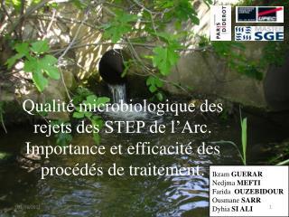 Qualité microbiologique des rejets des STEP de l'Arc.  Importance et efficacité des procédés de traitement.