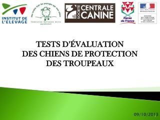 TESTS D'ÉVALUATION  DES CHIENS DE PROTECTION  DES TROUPEAUX