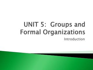 UNIT 5:  Groups and Formal Organizations