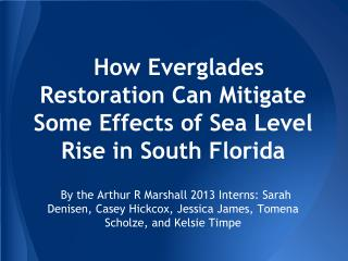 How Everglades Restoration  Can  Mitigate Some Effects of Sea Level Rise in South Florida