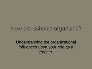 How are schools organized?