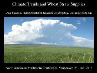 Climate Trends and Wheat Straw Supplies Dave Sauchyn, Prairie Adaptation Research Collaborative, University of Regina